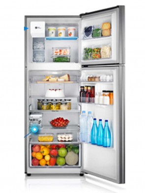 Samsung 234 Litres Refrigerator RT 22FGJADSA