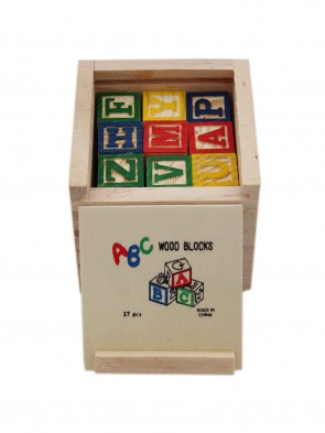 Kids Learning  Blocks 0011