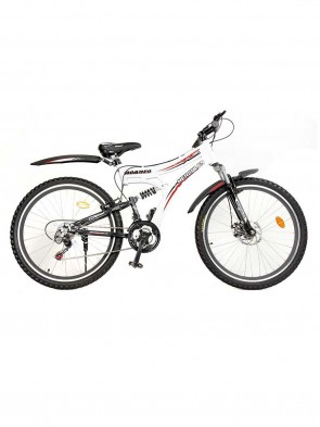 Phoenix Bicycle For Kids 0013